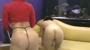 Bruna Ferraz Catia Carvalho